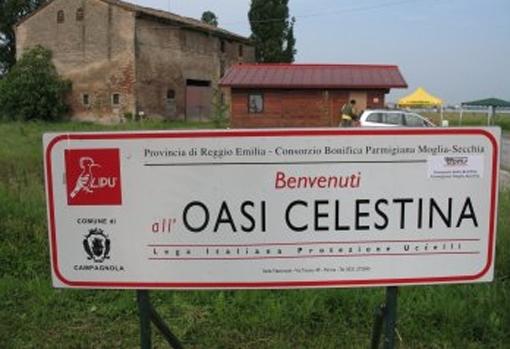 Oasis sito di incontri Sign in